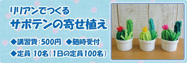 「リリアンでつくるサボテンの寄せ植え」 ◆講習費:500円